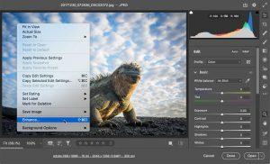 افزایش اندازه تصاویر بدون افت کیفیت